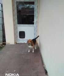 Pvc ulazna vrata-sa otvoromza kucne ljubimce