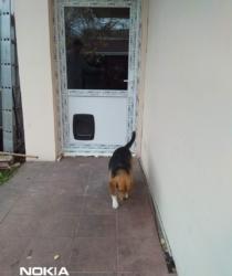 Pvc ulazna vrata-sa otvorom xza kucne ljubimce